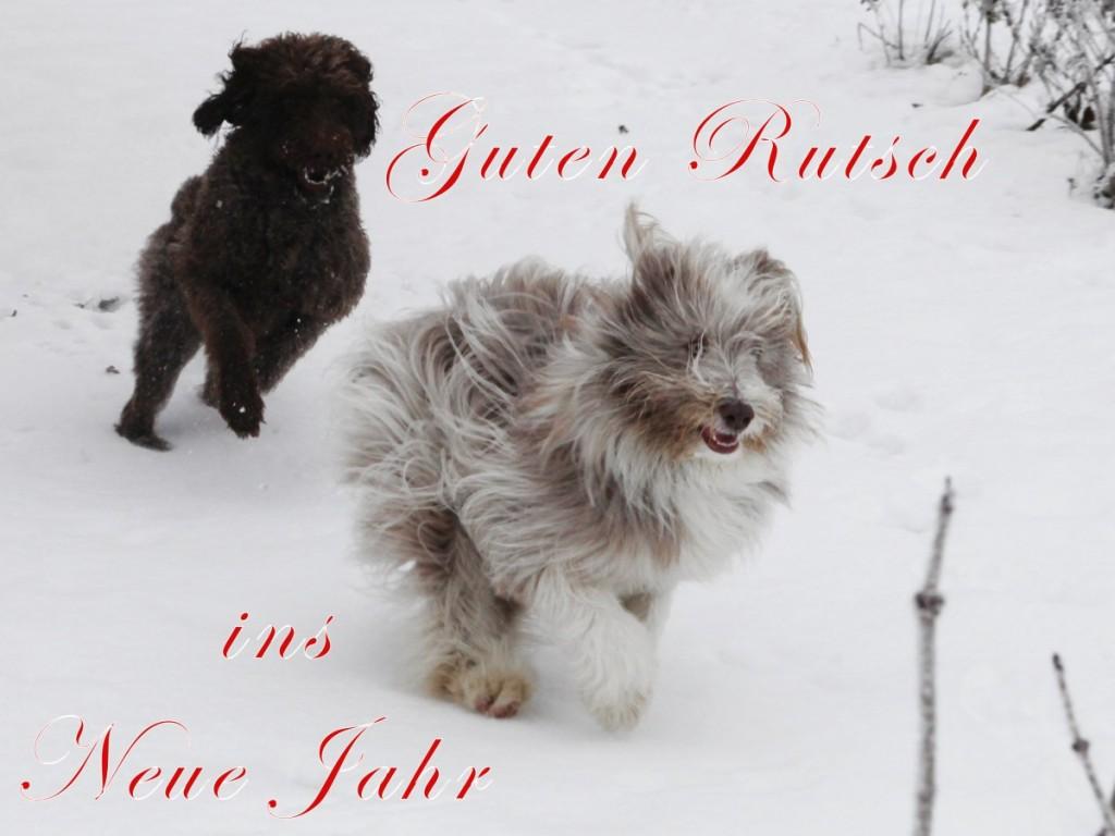 Frohe Weihnachten und einen guten Rutsch ins Neue Jahr 2013